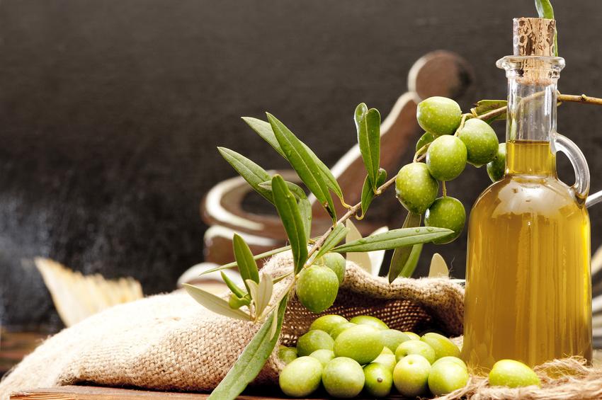 Aceite de oliva en Alcalá del Júcar Alcalá del Júcar: ¿por dónde empezar? Su gastronomía